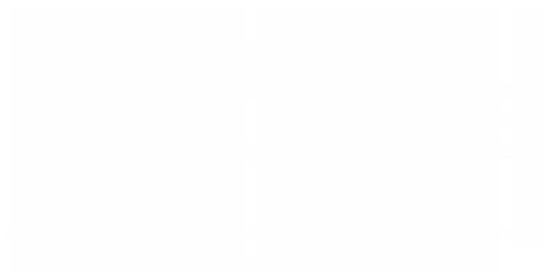 nlowe logo white